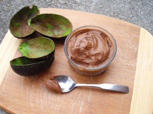 avocado-chocolate-mousee