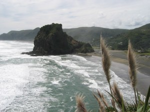 Lion_Rock,_Piha